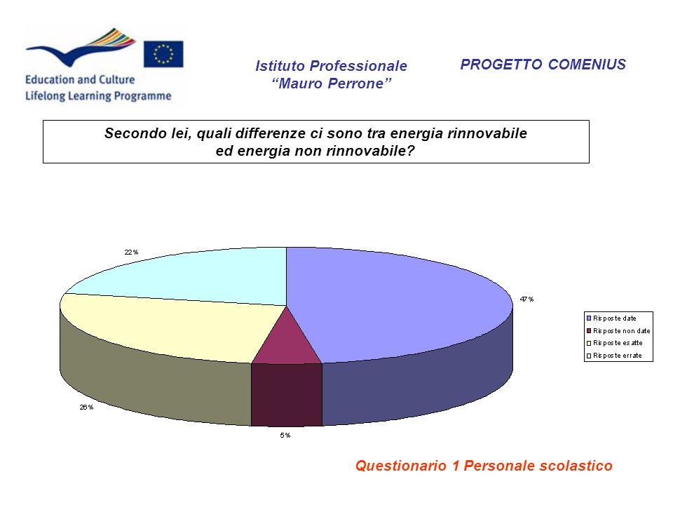 PROGETTO COMENIUS Secondo lei, quali differenze ci sono tra energia rinnovabile ed energia non rinnovabile? Istituto Professionale Mauro Perrone Quest