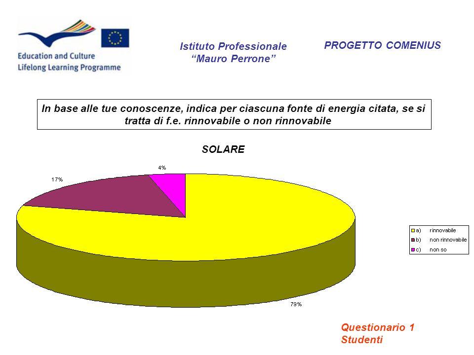 PROGETTO COMENIUS Secondo lei, quali differenze ci sono tra energia rinnovabile ed energia non rinnovabile.