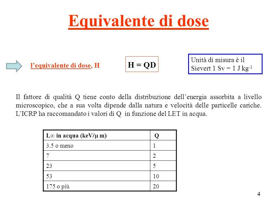 Q & LET 5