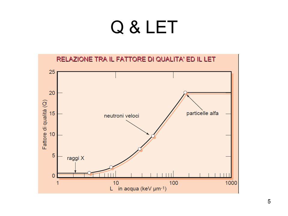 Equivalente di dose 6 Nel caso in cui le cessioni di energia avvengo con un certo spettro di valori del LET, si fa ricorso ad un valore efficace È la dose assorbita nellintervallo di LET compreso tra L ed L + dL nel punto di interesse