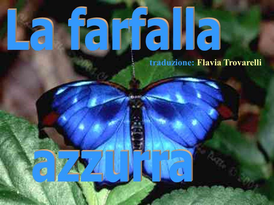 Ria Slides traduzione: Flavia Trovarelli