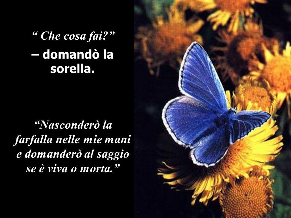 Che cosa fai? – domandò la sorella. Nasconderò la farfalla nelle mie mani e domanderò al saggio se è viva o morta.
