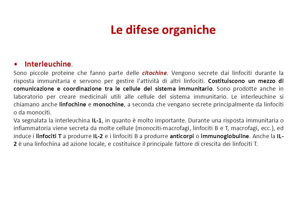 Le difese organiche Interleuchine. Sono piccole proteine che fanno parte delle citochine. Vengono secrete dai linfociti durante la risposta immunitari