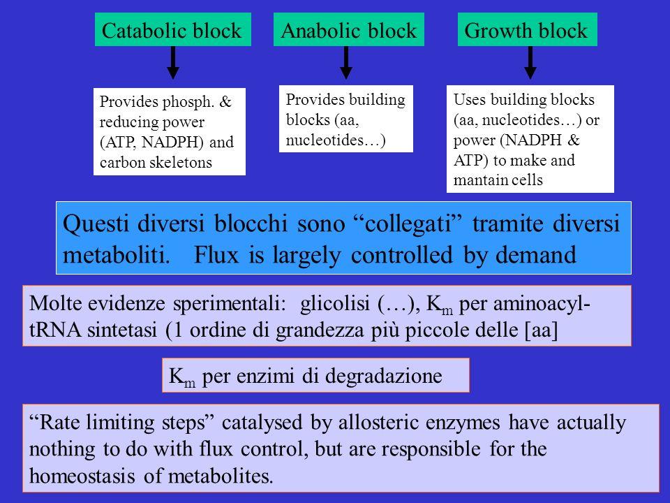Questi diversi blocchi sono collegati tramite diversi metaboliti.