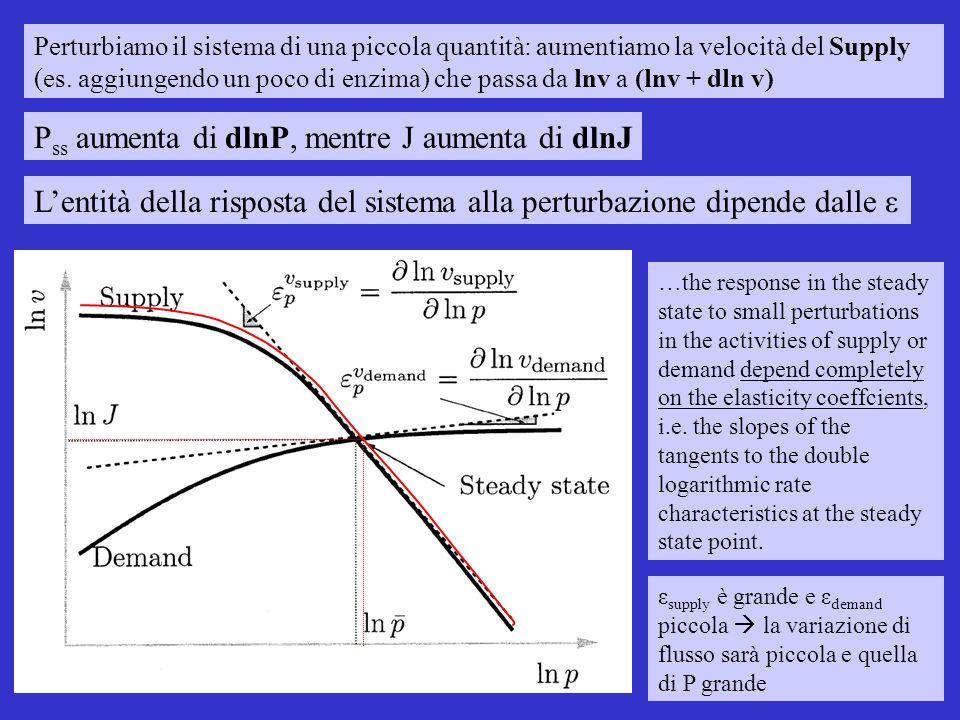 Perturbiamo il sistema di una piccola quantità: aumentiamo la velocità del Supply (es.