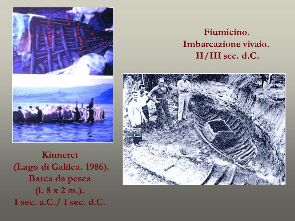 Fiumicino. Imbarcazione vivaio. II/III sec. d.C. Kinneret (Lago di Galilea. 1986). Barca da pesca (l. 8 x 2 m.). I sec. a.C./ I sec. d.C.