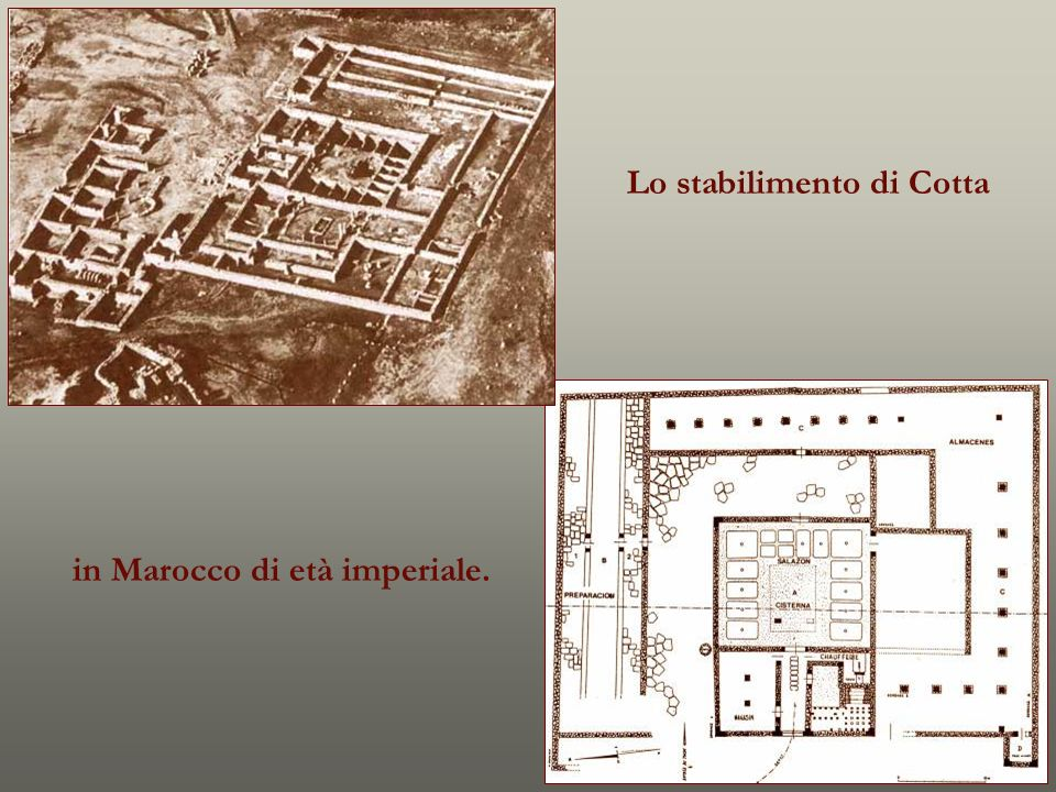 Lo stabilimento di Cotta in Marocco di età imperiale.