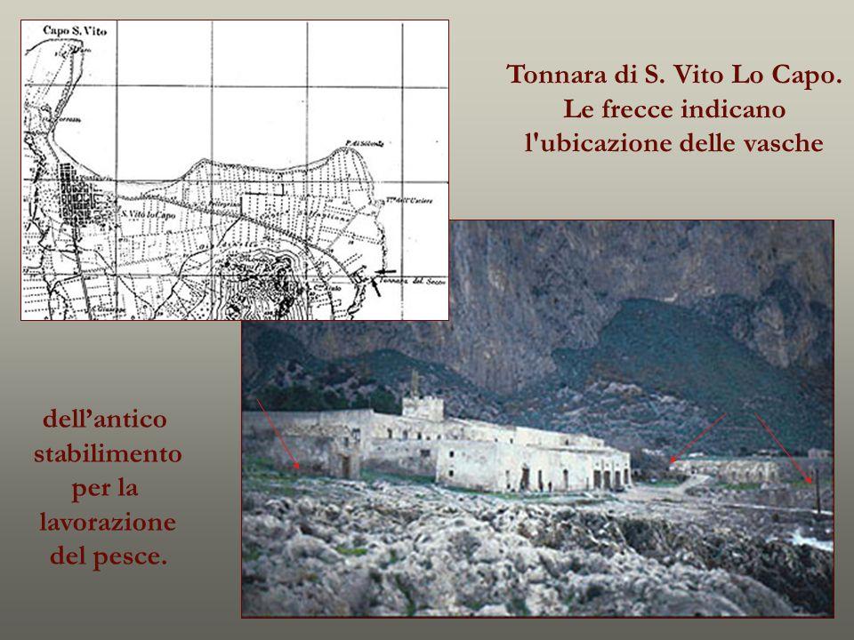 Tonnara di S. Vito Lo Capo. Le frecce indicano l'ubicazione delle vasche dellantico stabilimento per la lavorazione del pesce.