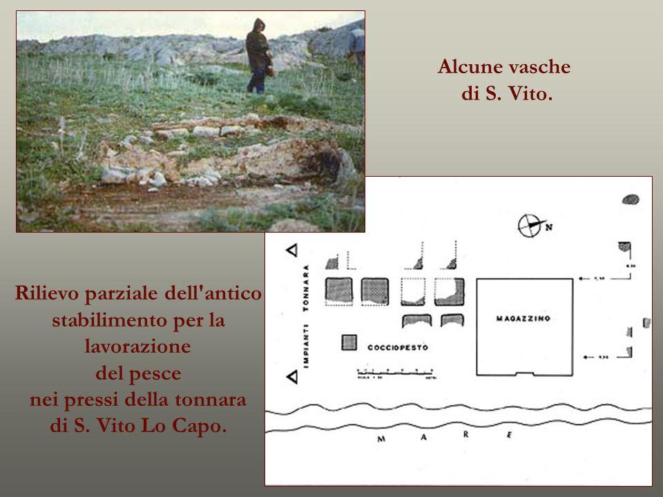 Rilievo parziale dell'antico stabilimento per la lavorazione del pesce nei pressi della tonnara di S. Vito Lo Capo. Alcune vasche di S. Vito.