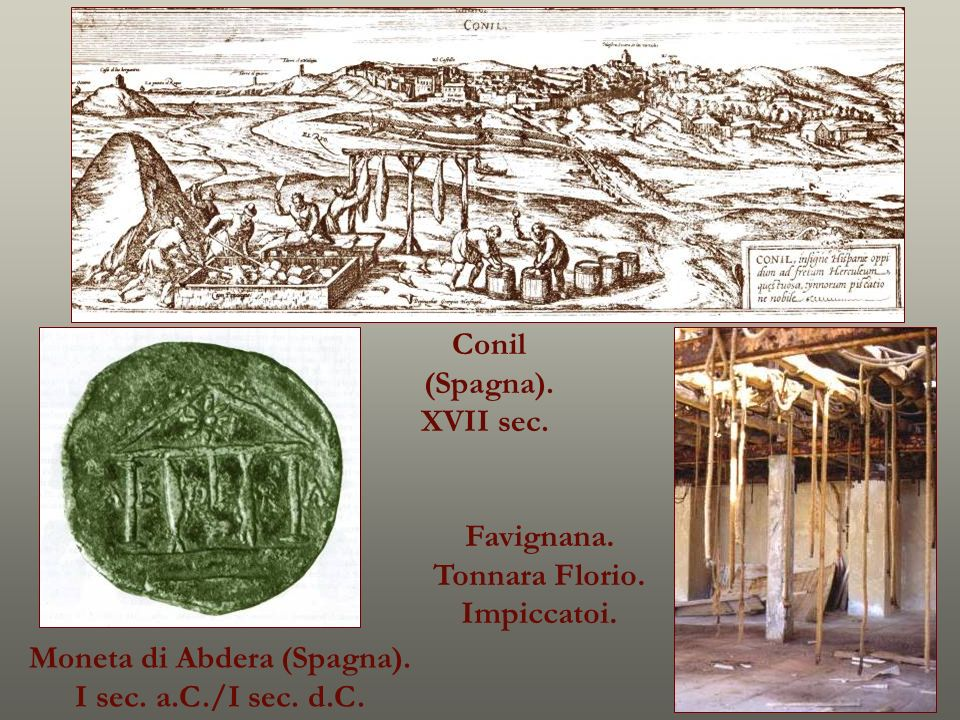Moneta di Abdera (Spagna). I sec. a.C./I sec. d.C. Favignana. Tonnara Florio. Impiccatoi. Conil (Spagna). XVII sec.