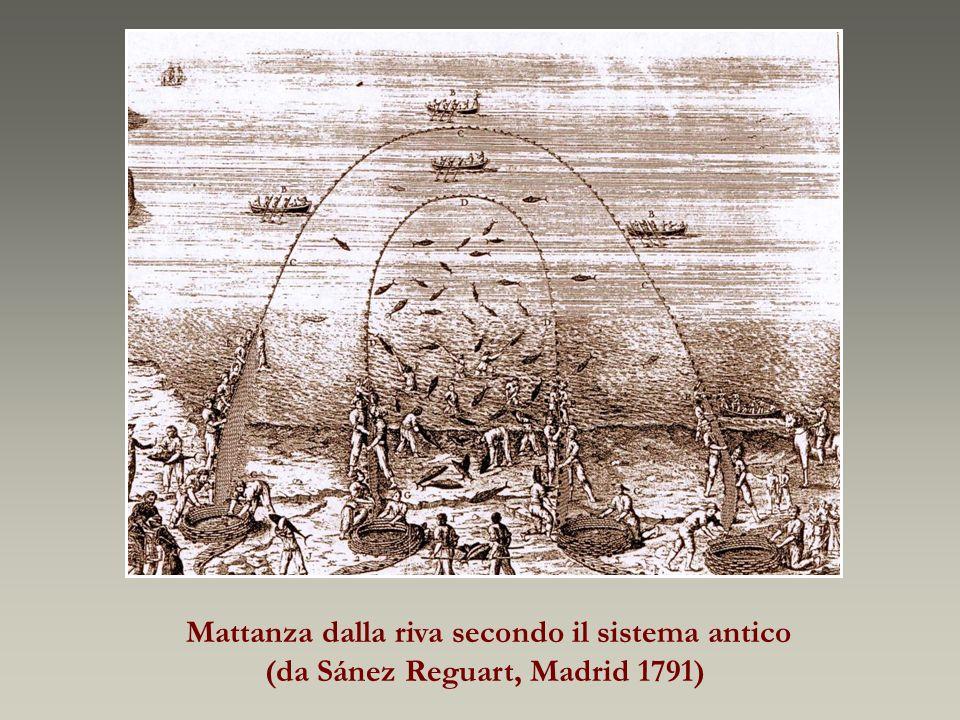 Mattanza dalla riva secondo il sistema antico (da Sánez Reguart, Madrid 1791)