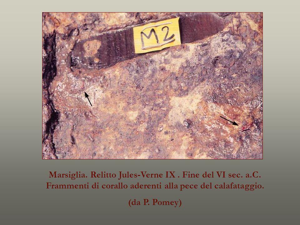 Marsiglia. Relitto Jules-Verne IX. Fine del VI sec. a.C. Frammenti di corallo aderenti alla pece del calafataggio. (da P. Pomey)