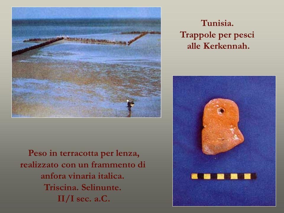 Tunisia. Trappole per pesci alle Kerkennah. Peso in terracotta per lenza, realizzato con un frammento di anfora vinaria italica. Triscina. Selinunte.