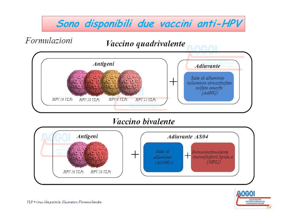 + Sale di alluminio (alluminio idrossifosfato solfato amorfo [AAHS]) HPV 16 VLPs HPV 18 VLPs HPV 6 VLPs HPV 11 VLPs Antigeni Adiuvante Vaccino quadriv