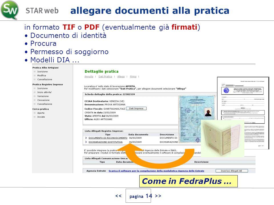 > in formato TIF o PDF (eventualmente già firmati) Documento di identità Procura Permesso di soggiorno Modelli DIA... allegare documenti alla pratica