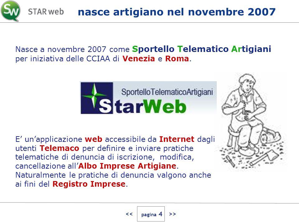 > Nasce a novembre 2007 come Sportello Telematico Artigiani per iniziativa delle CCIAA di Venezia e Roma.