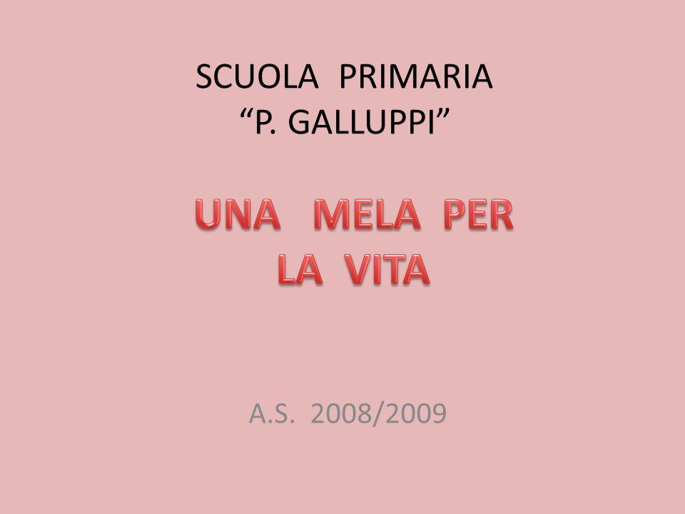 SCUOLA PRIMARIA P. GALLUPPI A.S. 2008/2009