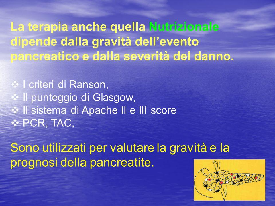 Pancreatology.2006 ;6(1-2):58-64.