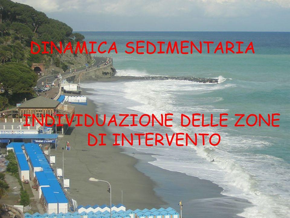 DINAMICA SEDIMENTARIA INDIVIDUAZIONE DELLE ZONE DI INTERVENTO