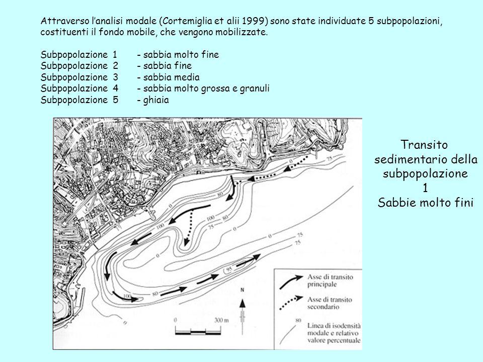 Attraverso lanalisi modale (Cortemiglia et alii 1999) sono state individuate 5 subpopolazioni, costituenti il fondo mobile, che vengono mobilizzate. S