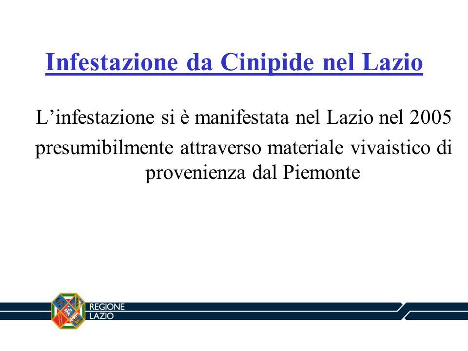 Infestazione da Cinipide nel Lazio Linfestazione si è manifestata nel Lazio nel 2005 presumibilmente attraverso materiale vivaistico di provenienza da
