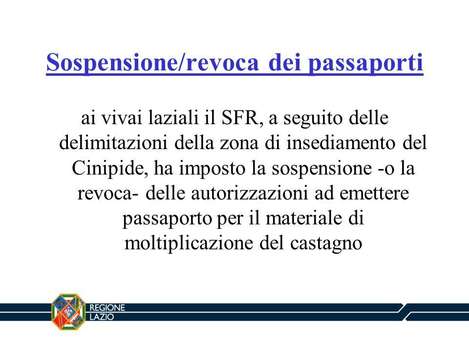 Sospensione/revoca dei passaporti ai vivai laziali il SFR, a seguito delle delimitazioni della zona di insediamento del Cinipide, ha imposto la sospen