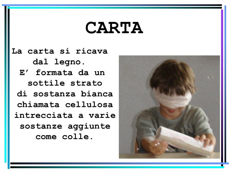 CARTA La carta si ricava dal legno. E formata da un sottile strato di sostanza bianca chiamata cellulosa intrecciata a varie sostanze aggiunte come co