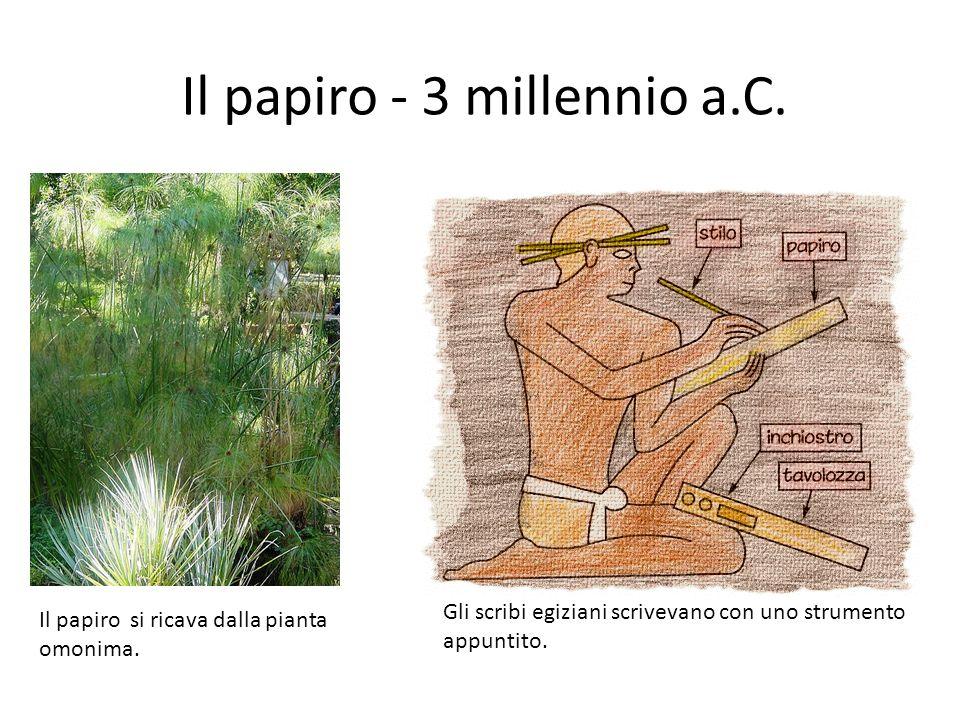Il papiro - 3 millennio a.C. Gli scribi egiziani scrivevano con uno strumento appuntito. Il papiro si ricava dalla pianta omonima.