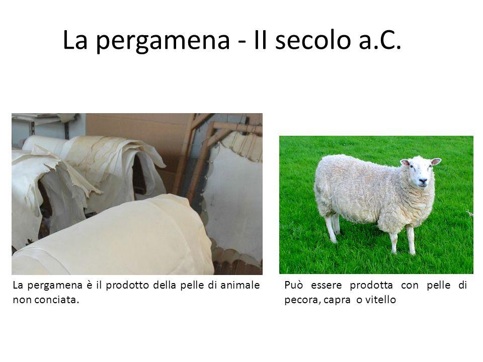 La pergamena è il prodotto della pelle di animale non conciata. La pergamena - II secolo a.C. Può essere prodotta con pelle di pecora, capra o vitello