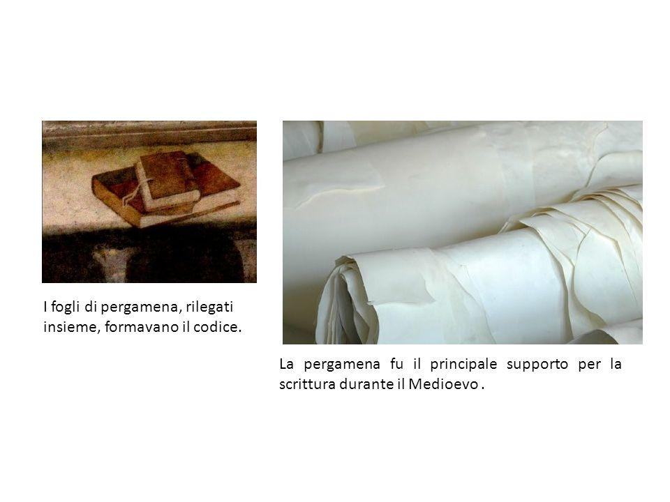 I fogli di pergamena, rilegati insieme, formavano il codice. La pergamena fu il principale supporto per la scrittura durante il Medioevo.