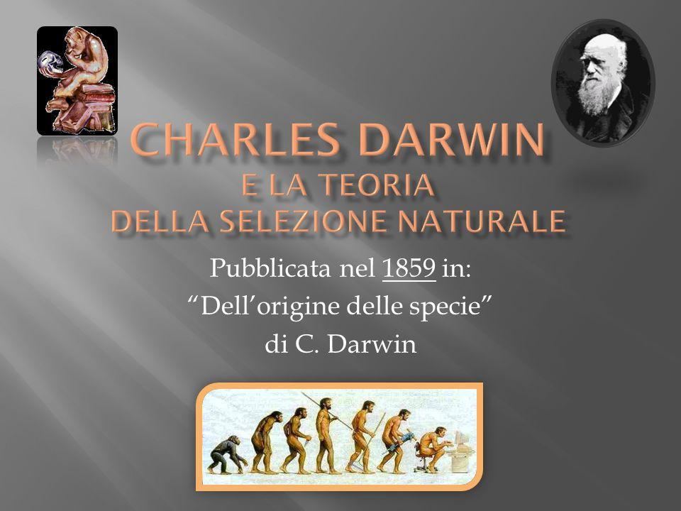 Pubblicata nel 1859 in: Dellorigine delle specie di C. Darwin