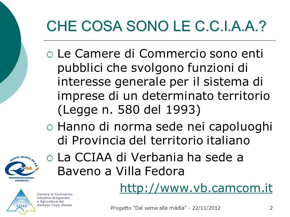 Progetto Dal seme alla màdia - 22/11/20122 CHE COSA SONO LE C.C.I.A.A..
