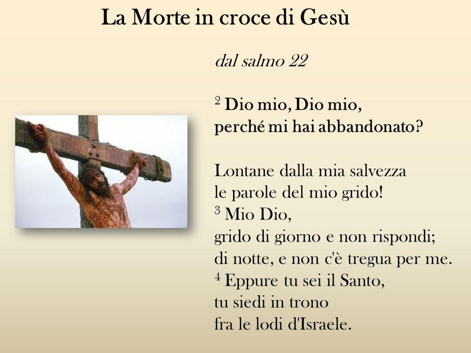 La Morte in croce di Gesù dal salmo 22 2 Dio mio, Dio mio, perché mi hai abbandonato? Lontane dalla mia salvezza le parole del mio grido! 3 Mio Dio, g