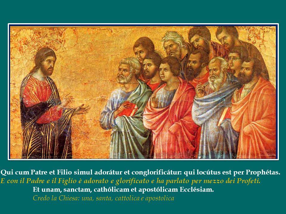Papa Francesco ha dedicato lUdienza Generale di mercoledì 29 maggio 2013 in Piazza San Pietro al Credo La Chiesa: famiglia di Dio Papa Francesco ha de