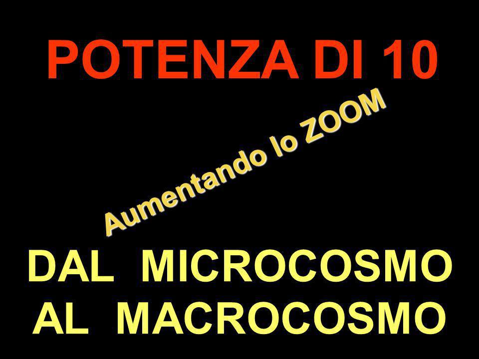 . Aumentando lo ZOOM POTENZA DI 10 DAL MICROCOSMO AL MACROCOSMO