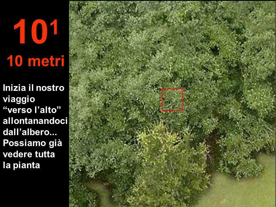 10 5 Il pianeta Terra è soltanto una inezia nellimmensità dello spazio...