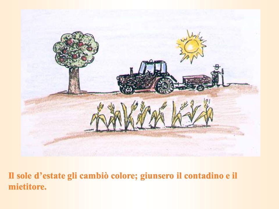 Il sole destate gli cambiò colore; giunsero il contadino e il mietitore.