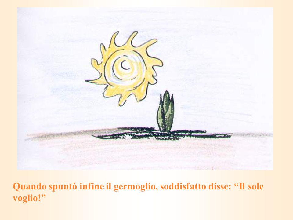 Quando spuntò infine il germoglio, soddisfatto disse: Il sole voglio!