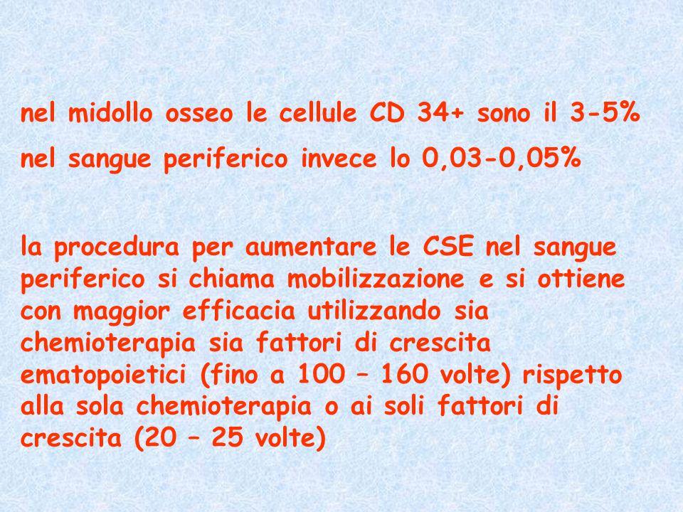 nel midollo osseo le cellule CD 34+ sono il 3-5% nel sangue periferico invece lo 0,03-0,05% la procedura per aumentare le CSE nel sangue periferico si