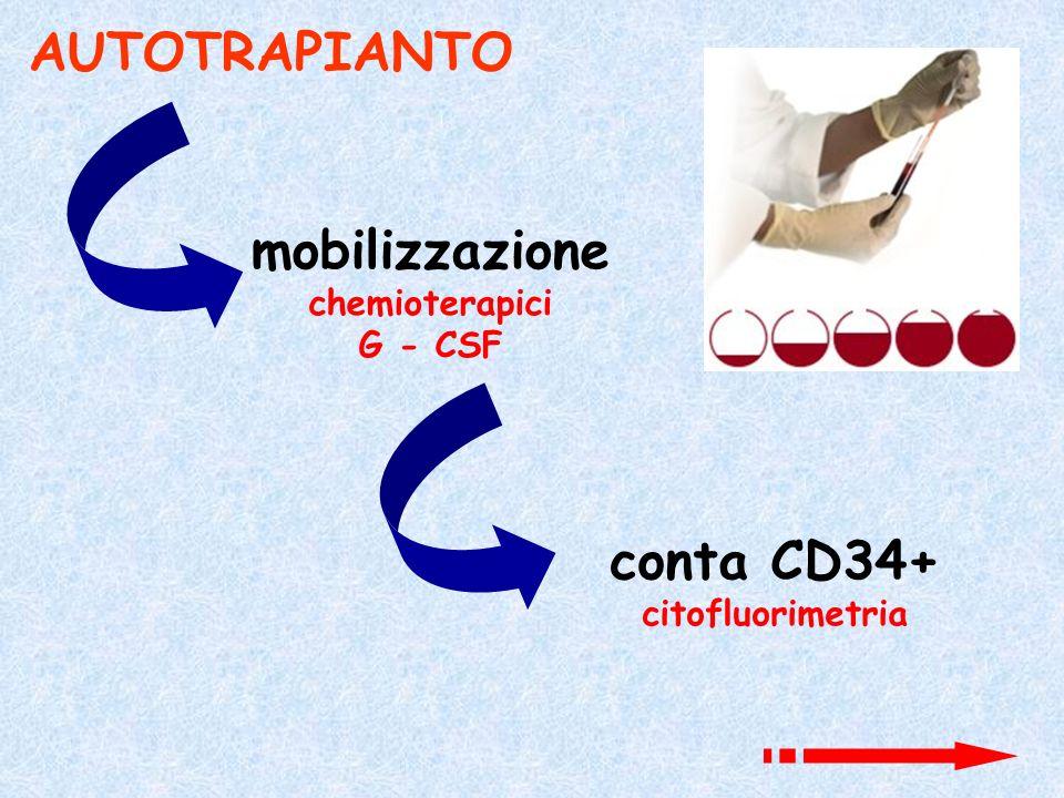 AUTOTRAPIANTO mobilizzazione chemioterapici G - CSF conta CD34+ citofluorimetria