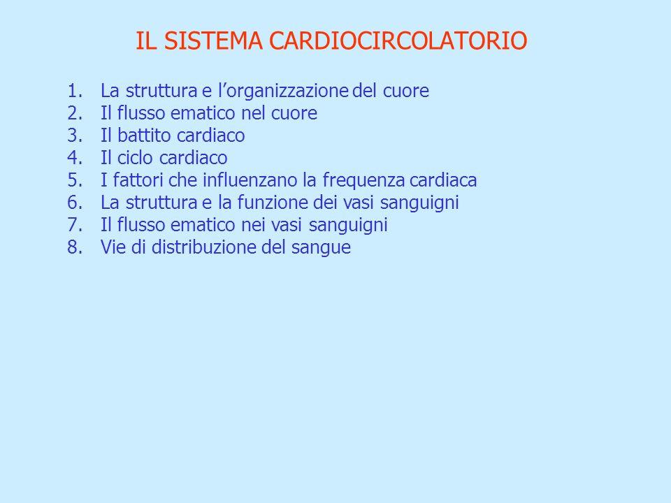 1.La struttura e lorganizzazione del cuore 2.Il flusso ematico nel cuore 3.Il battito cardiaco 4.Il ciclo cardiaco 5.I fattori che influenzano la freq