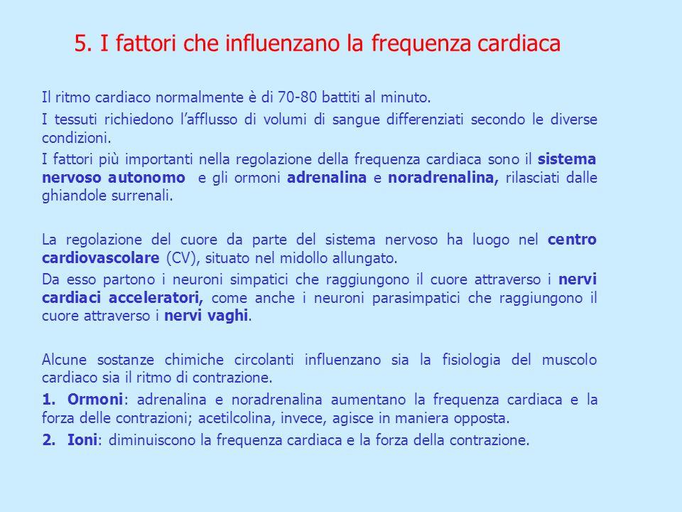 5. I fattori che influenzano la frequenza cardiaca Il ritmo cardiaco normalmente è di 70-80 battiti al minuto. I tessuti richiedono lafflusso di volum