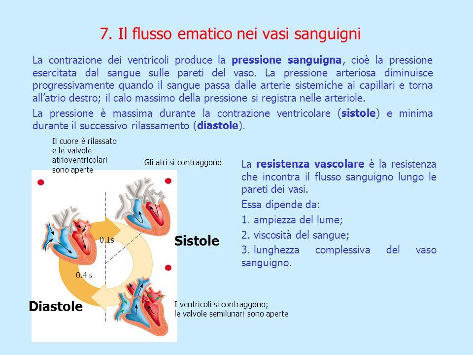 7. Il flusso ematico nei vasi sanguigni La contrazione dei ventricoli produce la pressione sanguigna, cioè la pressione esercitata dal sangue sulle pa