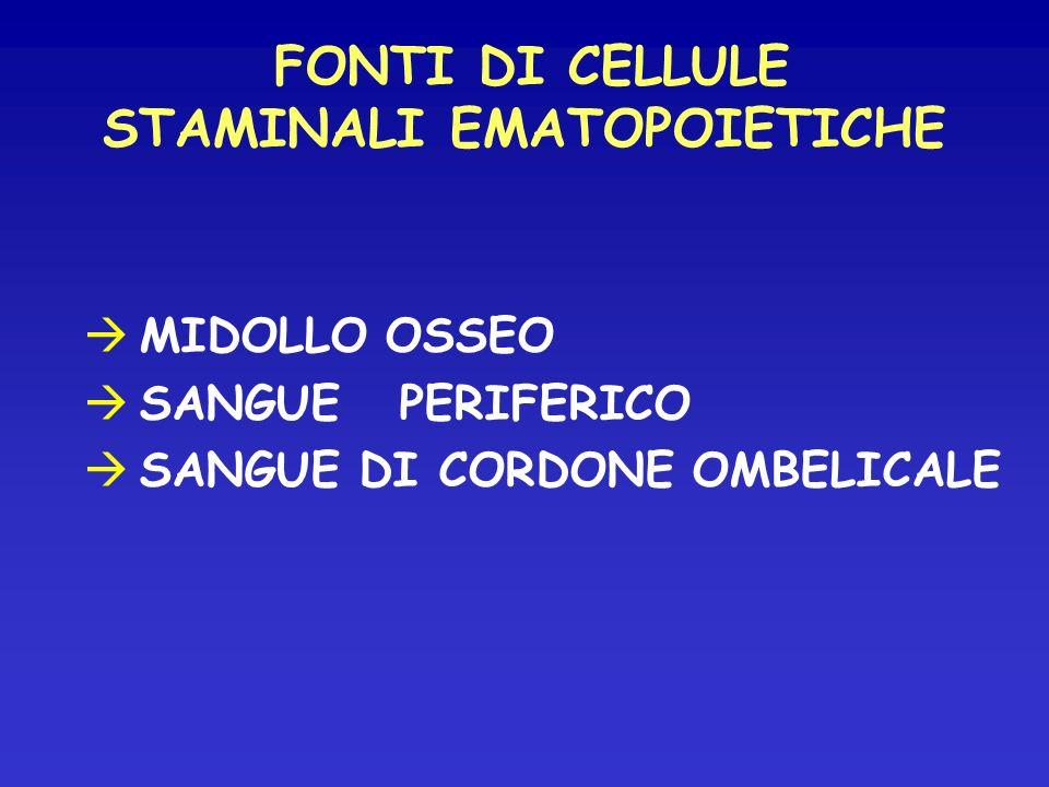 FONTI DI CELLULE STAMINALI EMATOPOIETICHE MIDOLLO OSSEO SANGUE PERIFERICO SANGUE DI CORDONE OMBELICALE