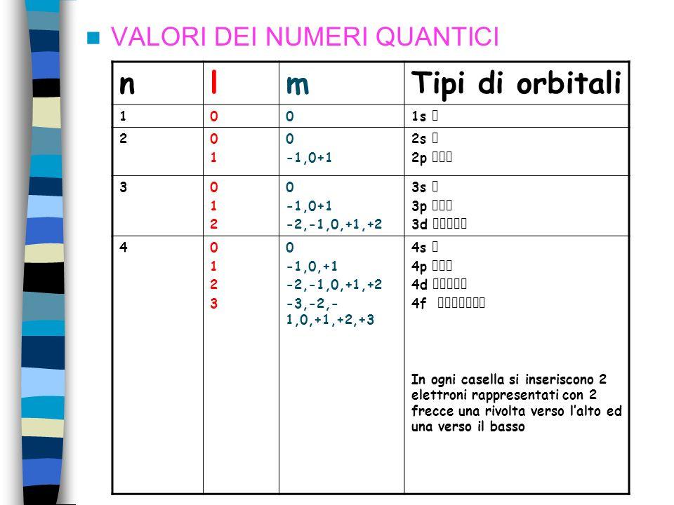 VALORI DEI NUMERI QUANTICI nlmTipi di orbitali 1001s 20101 0 -1,0+1 2s 2p 3012012 0 -1,0+1 -2,-1,0,+1,+2 3s 3p 3d 401230123 0 -1,0,+1 -2,-1,0,+1,+2 -3