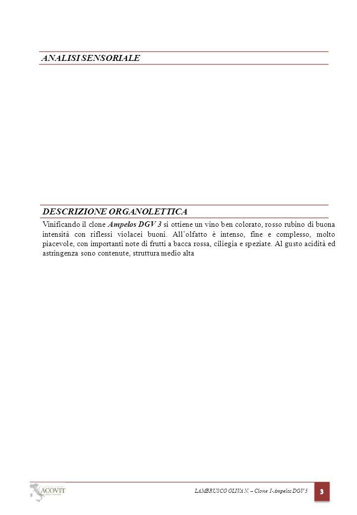 DESCRIZIONE ORGANOLETTICA ANALISI SENSORIALE Vinificando il clone Ampelos DGV 3 si ottiene un vino ben colorato, rosso rubino di buona intensità con riflessi violacei buoni.