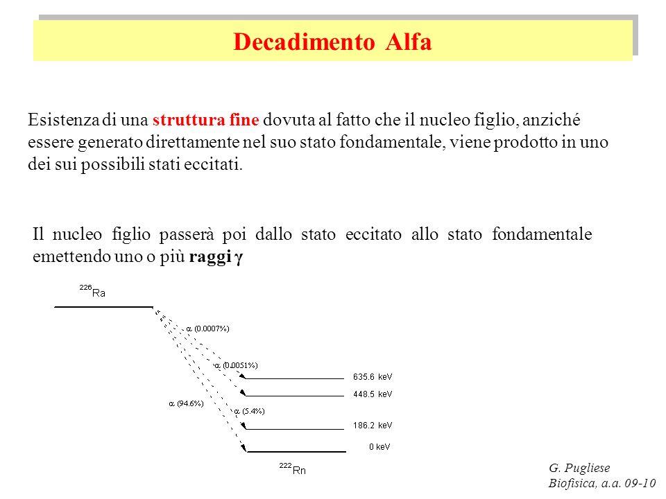 Decadimento Alfa G. Pugliese Biofisica, a.a. 09-10 Esistenza di una struttura fine dovuta al fatto che il nucleo figlio, anziché essere generato diret