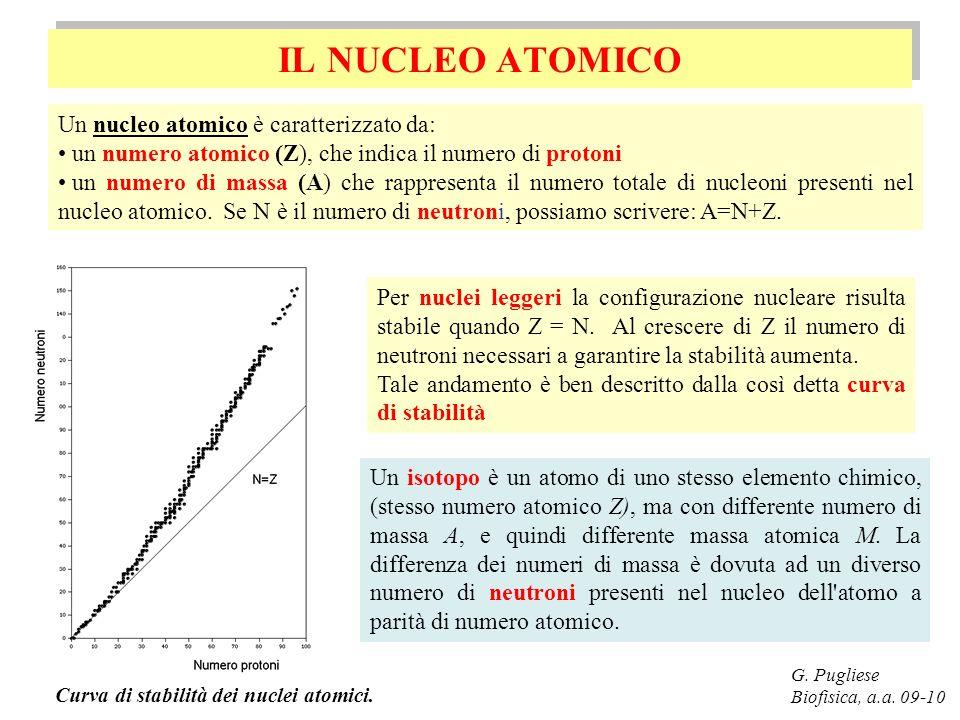 IL NUCLEO ATOMICO G. Pugliese Biofisica, a.a. 09-10 Un nucleo atomico è caratterizzato da: un numero atomico (Z), che indica il numero di protoni un n