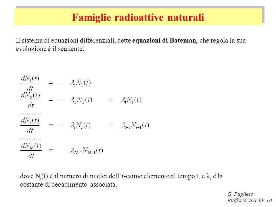 Famiglie radioattive naturali G. Pugliese Biofisica, a.a. 09-10 Il sistema di equazioni differenziali, dette equazioni di Bateman, che regola la sua e