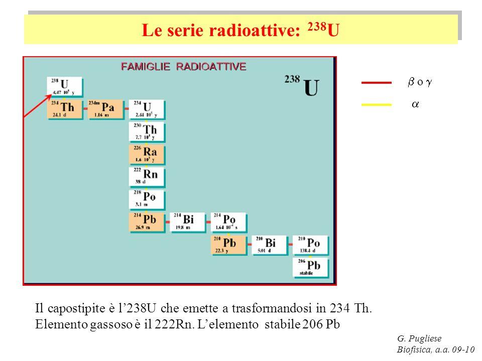 Le serie radioattive: 238 U G. Pugliese Biofisica, a.a. 09-10 Il capostipite è l238U che emette a trasformandosi in 234 Th. Elemento gassoso è il 222R